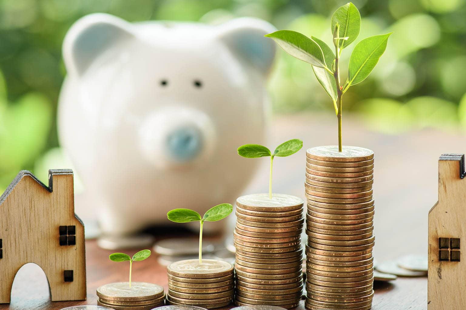 Cinco claves de ahorro energético para Micropymes y Autónomos