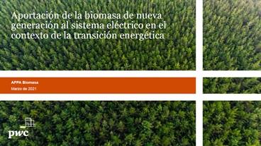 La biomasa puede ahorrar 3.600 millones y se posiciona como la tecnología renovable más rentable